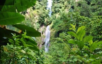 Dominica: Unser Tagesausflug im Video