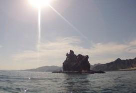 Ausflugs-Check: Delfinbeobachtung und Badespaß in Muscat