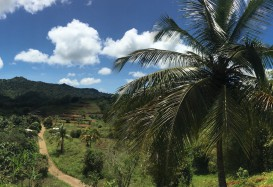 Impressionen: Karibische Inseln mit AIDAdiva März 2016